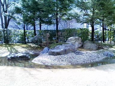 201103庭.JPG